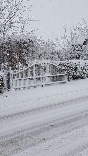 Oosterhout Gelderland Snow Vance Shades Of Winter