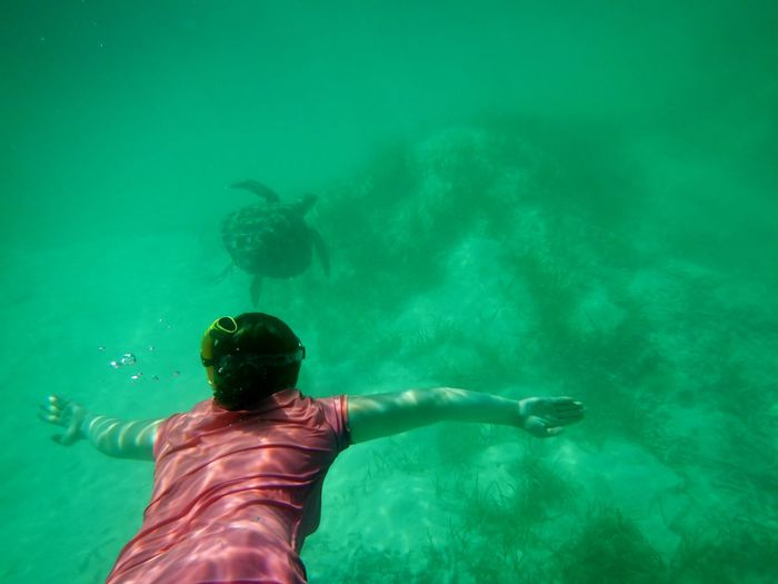 Rear view of woman snorkeling undersea