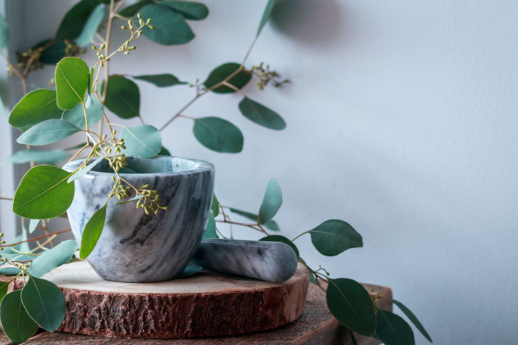 Pestle and mortar on a rustic background with beautiful eucalyptus