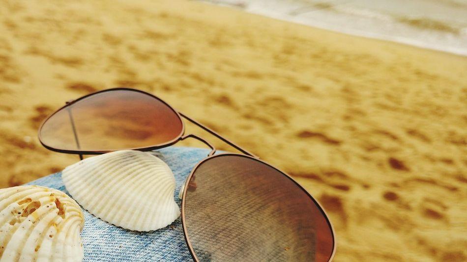 Beach Sea Sand Sunglasses Shells Travel Lazy Jeans Sunglass  The OO Mission