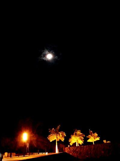 Luna preciosa.