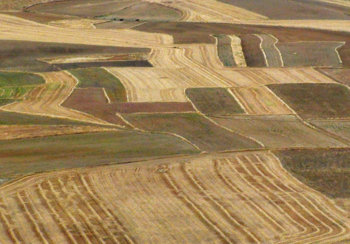 Agricultural Land Alentejo Alentejo,Portugal Arid Climate Landscape Landscape_Collection Natural Pattern Pattern Textured