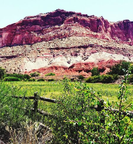 Sandstone Color Capital Reef Trees Utah Sandstone Cliffs National Park Great Outdoors With Adobe