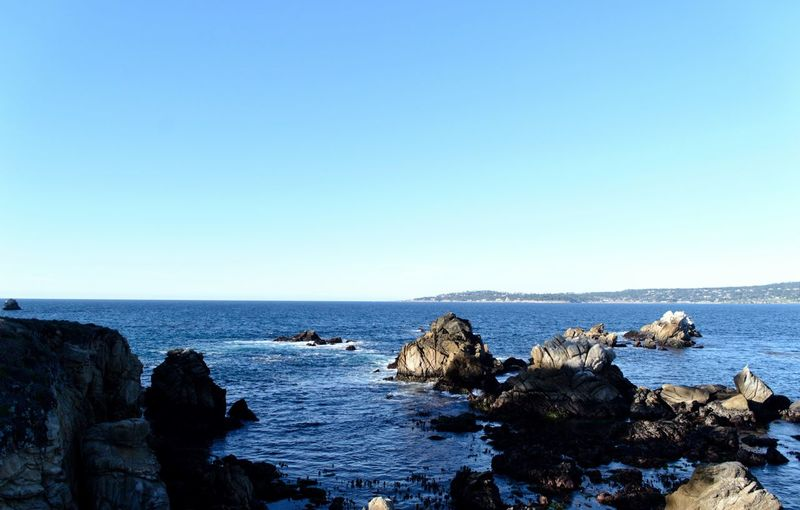 Point Lobos State Park CA Water Sea Sky Copy Space Scenics - Nature Rock Clear Sky Rock - Object Beauty In Nature Horizon Over Water Blue Horizon Nature Day Tranquil Scene Beach Tranquility No People