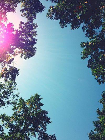 오랫만에 예전 동네에... 역시 하늘은 그대로.