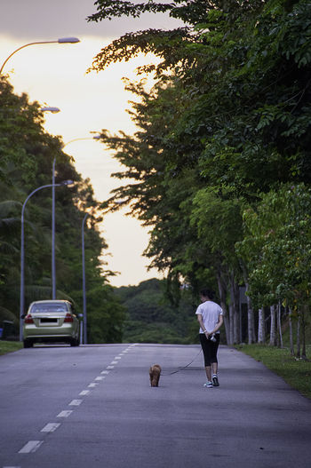 A jogger takes her dog on a run, through the empty streets Casual Clothing Country Road Day Diminishing Perspective Empty Full Length Growth ISO Jogger Jogging Jogging Time Leisure Activity Lifestyles Nature On The Move Outdoors Rear View Road S The Way Forward Tree Vanishing Point