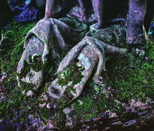 Angel Feet Beauty In Decay Close-up Detail Feet Growing Kneeling Angel Moss Part Of Stone Textured