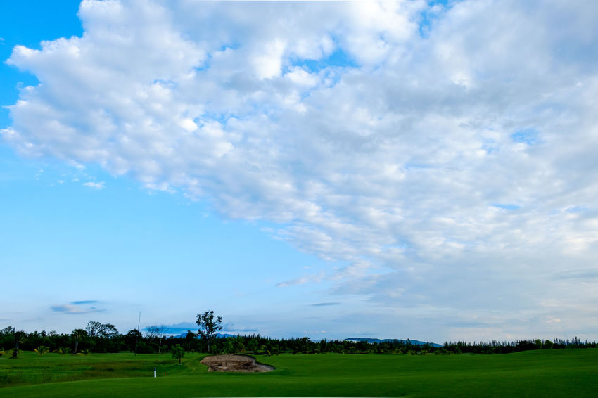 Agriculture Animal Themes Beauty In Nature Blue Cloud - Sky Day Field Grass Landscape Nature No People Outdoors Rural Scene Scenics Sky Tranquil Scene Tranquility Tree