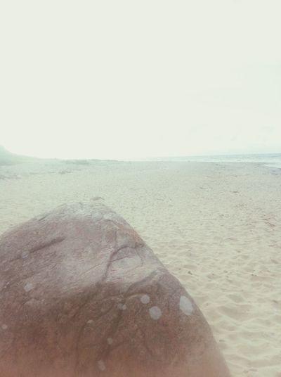Beach Zen Bliss