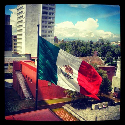 Museo De La Tolerancia Relaciones Exteriores desde Juzgados Familiares En El D.F. Banera de México