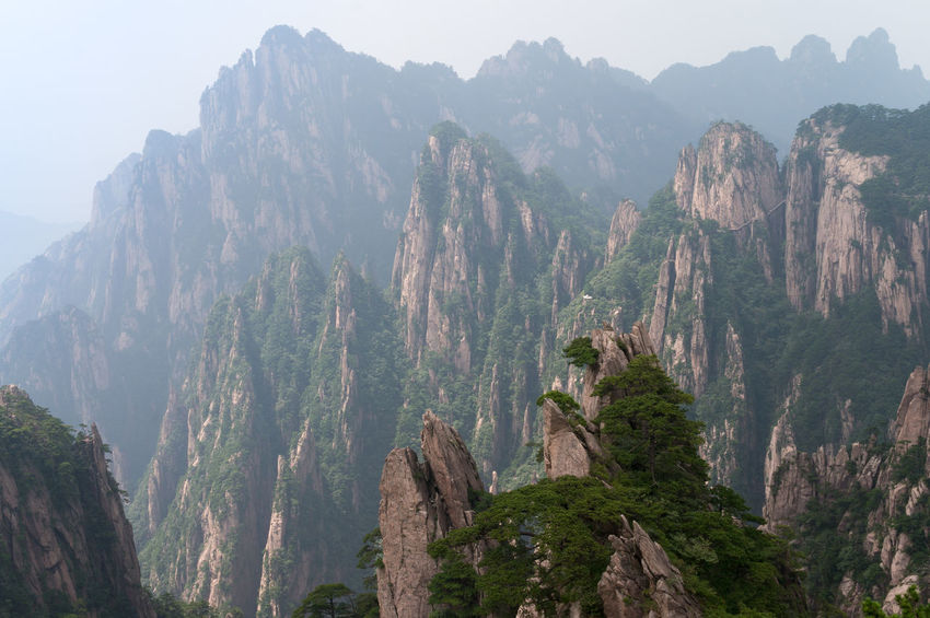 Adventure Asian  Canyon Chinese Cliff Day Exploring Geology Green Huangshan Journey Mountain Mountain Range Nationalpark Nature Outdoors Rock Rock Formation Rough Scenics Travel Tree View View From Above Voyage