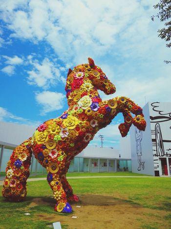 Flowerhorse Clorful Beautiful Blue Sky Museum Towada