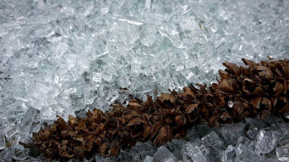 Glass Broken Glass Shards Crystal