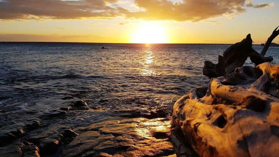 big island sunset Big Island Hawaii Travel Sunset Beachphotography Vacation Destination Golden Pacific Ocean Tropics Sunset Sea Cloud - Sky Nature Beach Sun Beauty In Nature