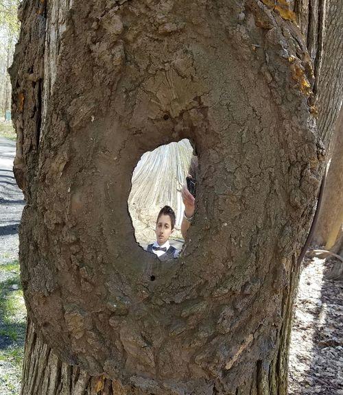 Mirror In A Tree. Sculpture Garden Art Boy Tree Creative WorkOfArt