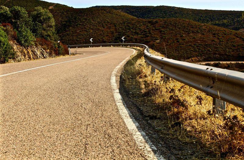 Empty Road Leading Towards Trees