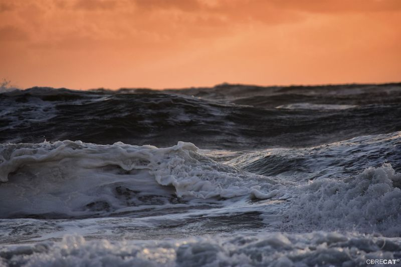 Ocean Sunset_collection Crashing Waves  Northsea Denmark Denmark 🇩🇰 EyeEm Masterclass EyeEm Nature Lover Landscape_Collection Wave Water Sea Sunset Seascape Crashing Horizon Over Water