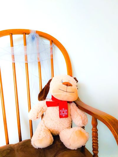 Stuffed Animal on Rocking Chair with Lace Ribbon Against White Background Forgotten Loss Days Gone By Left Behind Baby Toy Chair Rocking Chair Furniture White Background White Color Copy Space Childhood Memories Childhood Remembrance Reminder Dog Childhood Friend Innocence Toy Animal Toy Photography Stuffed Toy Childhood Toy Close-up Toy Animal Animal Representation Doll Babyhood Seat