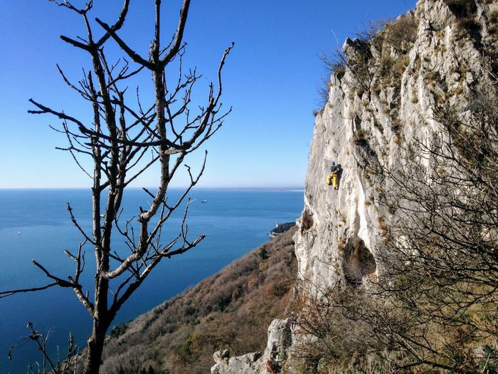 Climber Trieste Bare Tree Beauty In Nature Branch Clear Sky Climberslife Climbing Day Horizon Horizon Over Water Napoleonica Road Nature No People Non-urban Scene Outdoors Plant Rock Scenics - Nature Sea Sky Tranquil Scene Tranquility Tree Water
