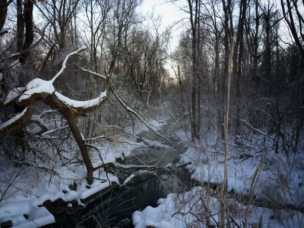 IPS2016Composition Winter Snow Beautiful Beautiful Nature Beautiful Morning Water IPS2016Winter