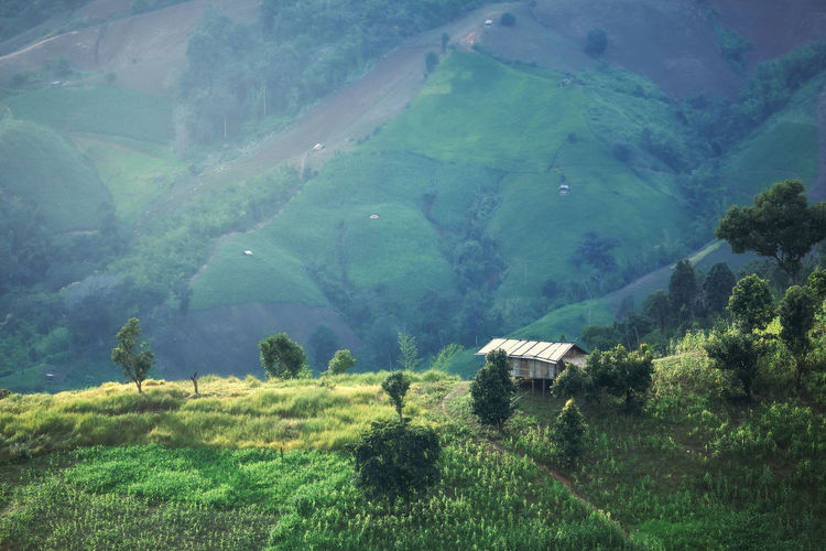Scenic view of agricultural field by mountain