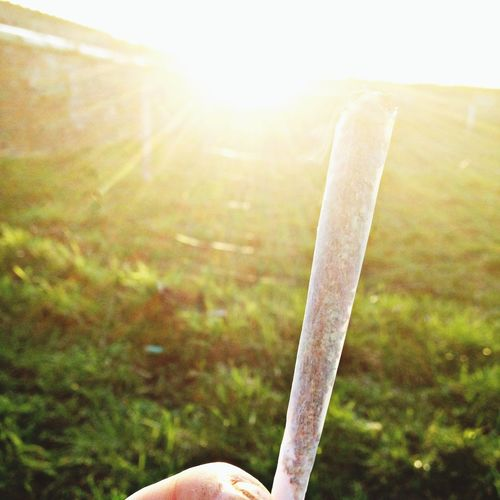 Smoke Weed Coffee And Cigarettes Enjoying The Sun ☀️??