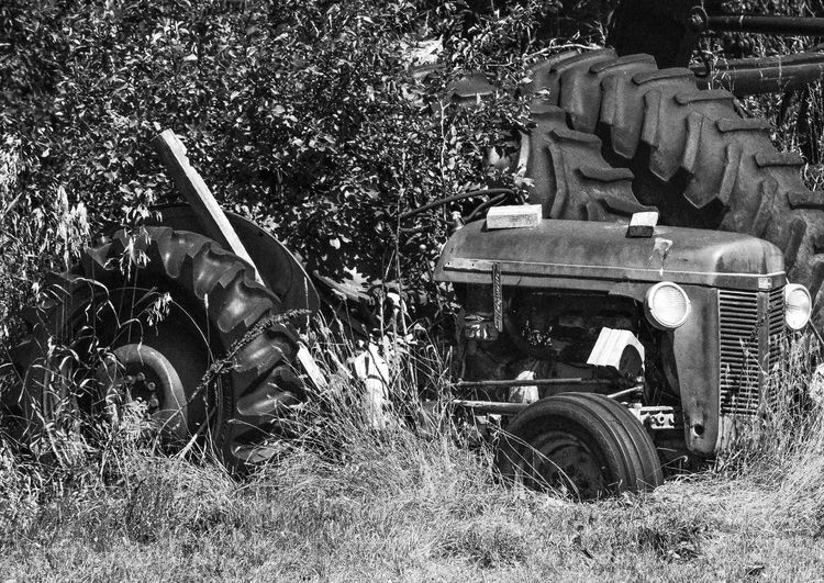 Graveyard for old tractors Lusk Wyoming Day Faded Paint Grass Large Tractor Tires Outdoors Rusted Metal  Small Tractor Tires Summer Days