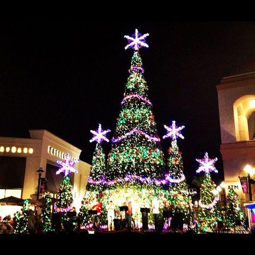 Christmas Light Show ! Christmas Lights Festive Wiregrass mall