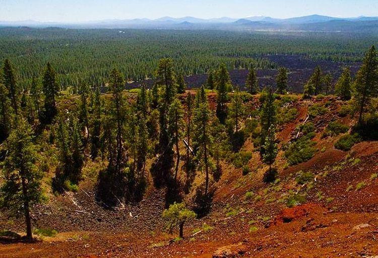 Lava Butte Crater Volcanic Landscape Volcanic Crater Volcanoes Tree Rural Scene Landscape Growing Valley