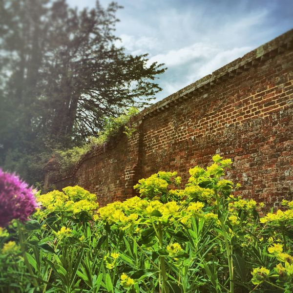 Garden Borders Downton Public Gardens Flowers, Nature And Beauty Flowers Village Life Summertime The Moot Walled Garden Old Walls Gardens Countryside Country Living Beautiful Nature Wiltshire Fine Art Photography Downton Salisbury Hidden Gems