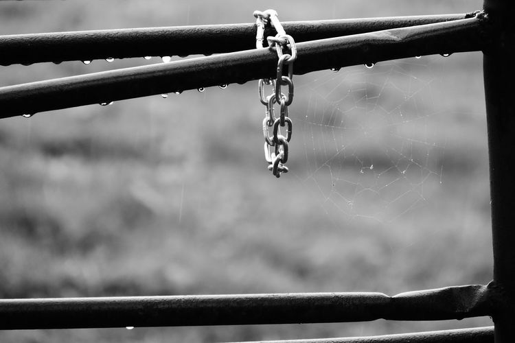 Close-Up Of Metallic Chain On Fence