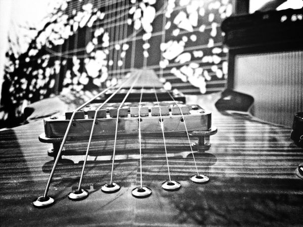 Cort z42 Guitar Cort