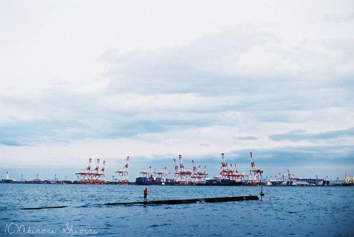 Taking Photos EyeEm Gallery Blue Streetphotography Sea Crane Filmcamera Agfa Nikon Yokohama Japan