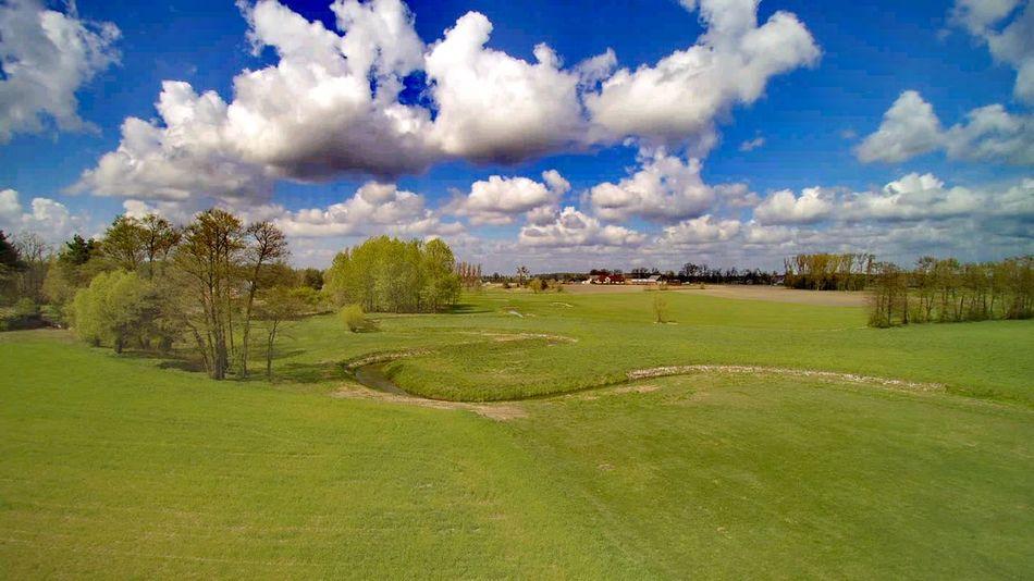 Tree Cloud - Sky Beauty In Nature Grass Nature Tranquility Landscape Sky Blue Green Color No People Day Outdoors Flower Scenics Golf Golf Course Green - Golf Course