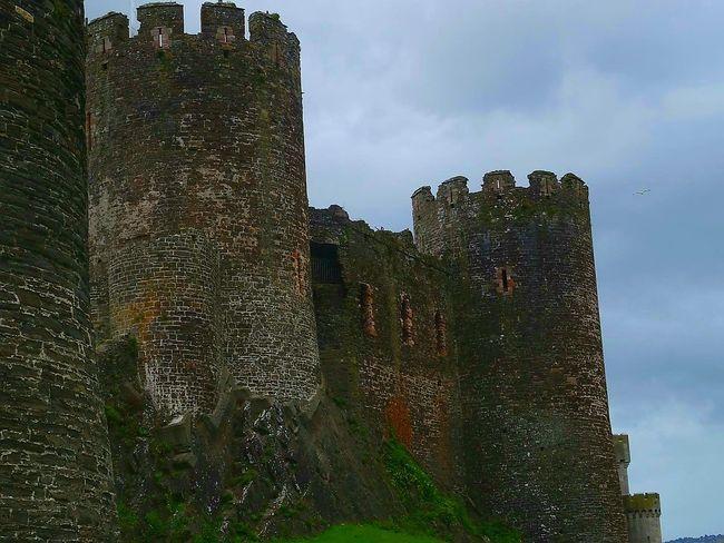 Castleporn Castle Grounds Castle Tower Castle Walls Castle Ruin Castle Castle Ruins EyeEm Gallery Canon500d Old Castle View  Castles The Week On EyeEm