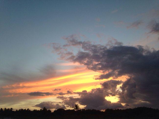 Skyporn Sky Sunset Florida