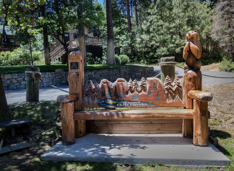 Animal Themes Architecture Bass Lake, California Bicycling Day Mountain Bike Nature No People Outdoors Recreation  Sculpture Sky Statue Tree View Waterfall