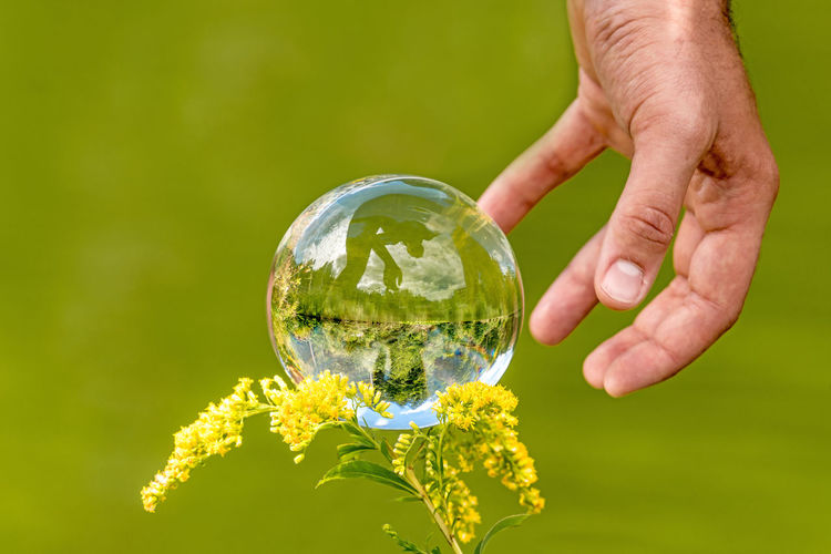 Close-up of person hand by crystal ball on plant outdoors