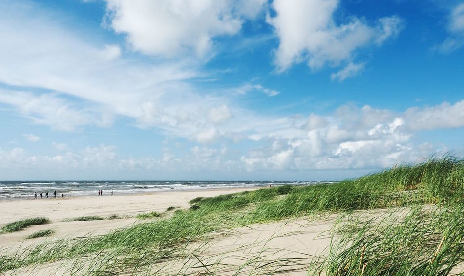 •feeling free• Sea Beach Scenics Tranquil Scene Horizon Over Water Water Nature Tranquility Sky Grass Beauty In Nature Day Cloud - Sky Sand Outdoors Marram Grass Vacations Landscape Growth Travel Holiday Egmond Aan Zee Netherlands Exceptional Photographs