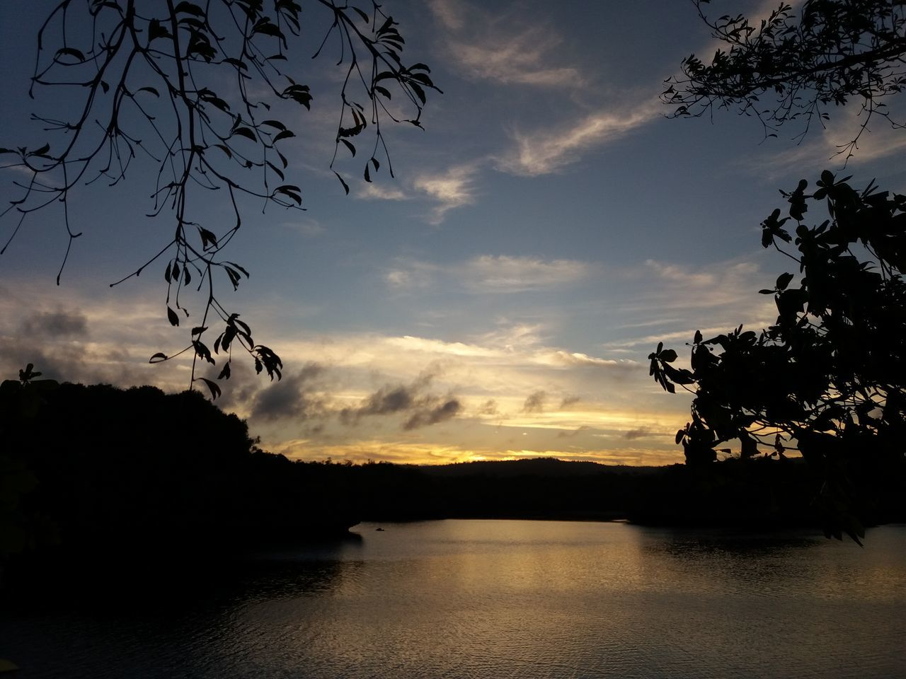 silhouette, nature, beauty in nature, sky, tree, scenics, sunset, flying, water, no people, lake, tranquility, outdoors, tranquil scene, bird, mountain, animal themes, spread wings, day