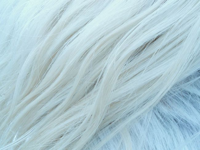 Abstract Backgrounds Blond Close-up Day Full Frame Horse Coat Horse Mane Light Gray Nature No People Outdoors Pattern Smooth Textured