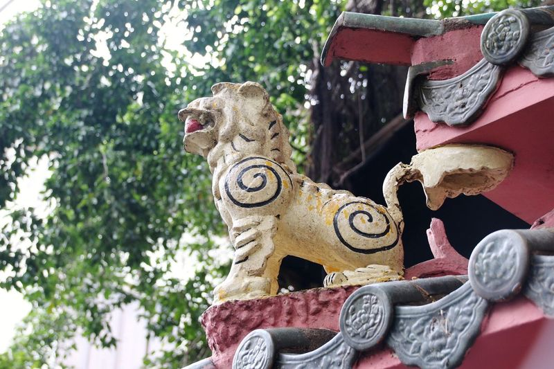 EyeEm Selects Day No People Outdoors Tree Reptile Close-up Ho Chi Minh City Religion Buddhism Taoism TaoistTemple