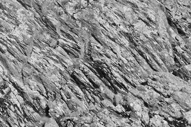 Greatfalls Virginia Rocks Nature Photography Blackandwhite Photography Monochrome Check This Out EyeEm Nature Lover EyeEm Best Shots Nature