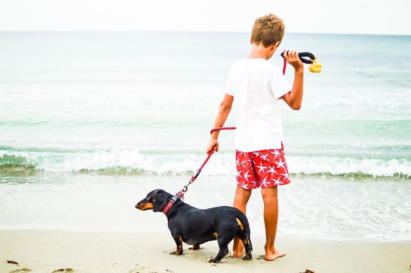 Pet Portraits Sea Dog Beach One Animal Pets Animal Themes Water Horizon Over Water One Person Day Domestic Animals Beauty In Nature Leisure Activity Dachshund