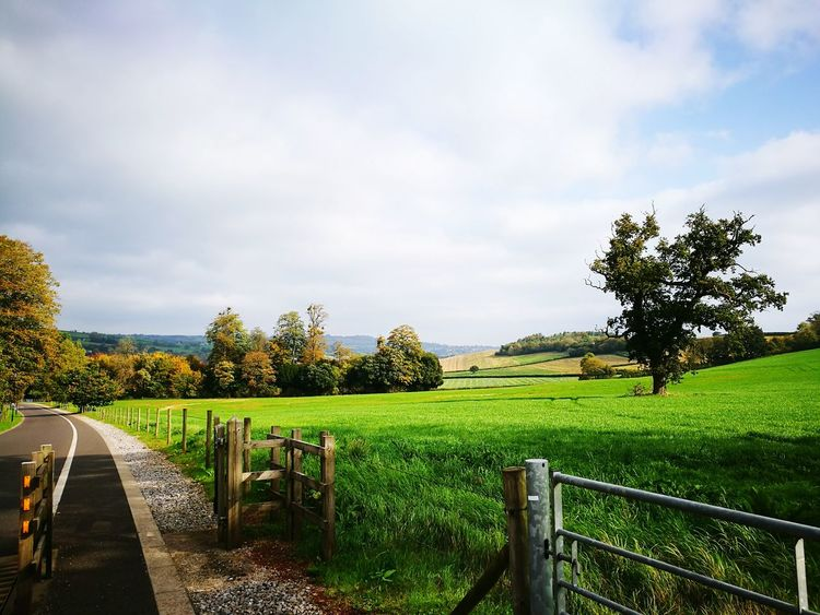 Cloud - Sky Outdoors Grass Tree Sky Nature No People Beauty In Nature Landscape Day Oak Tree Woods WoodLand Fence Tarmac Wooden Style Galvanized Gate Autumn Colours Cotswold Way Cotswolds Idyllic Fields Green Fields