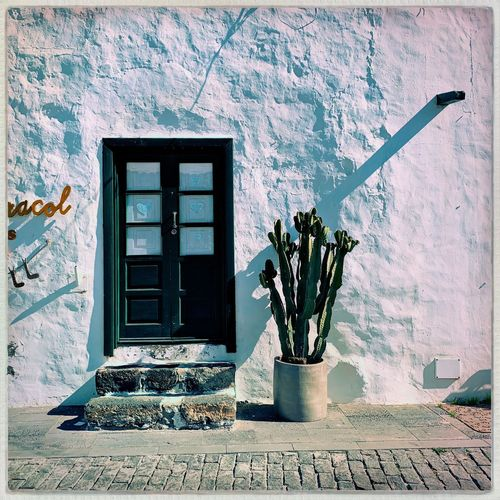 Lanzarote Canary Islands Teguise Lanzarote Island Built Structure Architecture Building Exterior Day Window No People Building Outdoors Sunlight Old My Best Photo