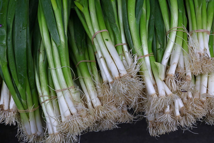 High angle view of scallions bundles at market stall