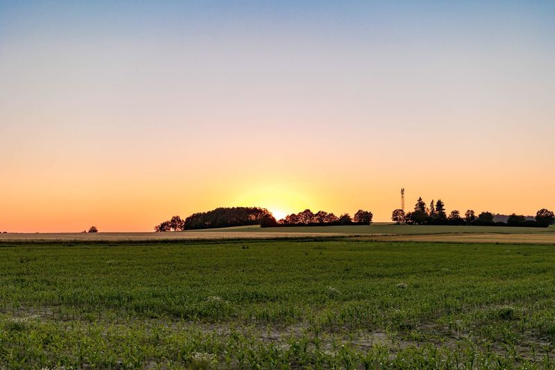 Tranquil Scene Scenics Sunset Landscape Tranquility Beauty In Nature Copy Space Green Color Rural Scene Clear Sky Nature Field Agriculture Solitude Orange Color Farm Remote Non-urban Scene Outdoors No People Tatooine