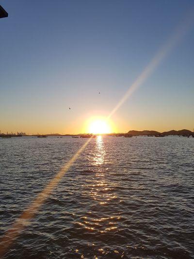 a sun is rising, another day has just begun Sun Rising New Day EyeEm Korea Sosan Beach Bird Flying Sunset Mid-air Sunlight Awe Low Tide