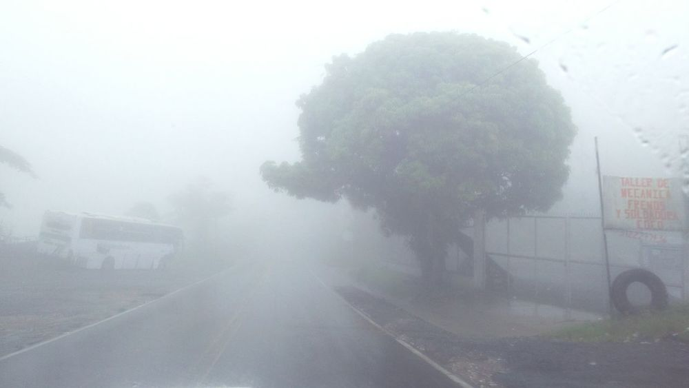 Fog Nature Tree Rainy Season Outdoors Travel Antioquia Road Scenics Cold Temperature Silence Cloudy The Week On EyeEm